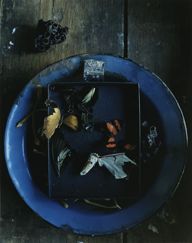 Martyn Thompson - Heart Of Glass #7