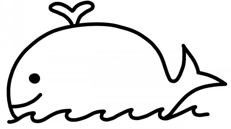 whale-frame