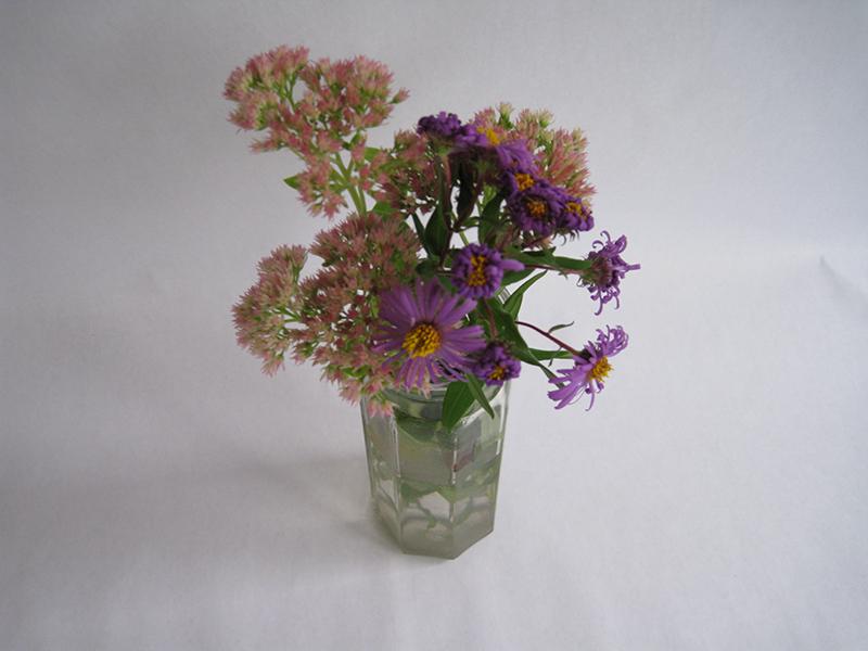 Elise Gardella - Pretty Flowers